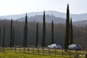 mogol. italiaunica (39)