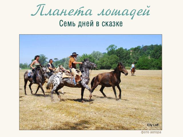 Планета лошадей семь дней в сказке (SuperСтиль)