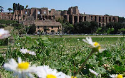 (12.08.2010) Отель в руинах