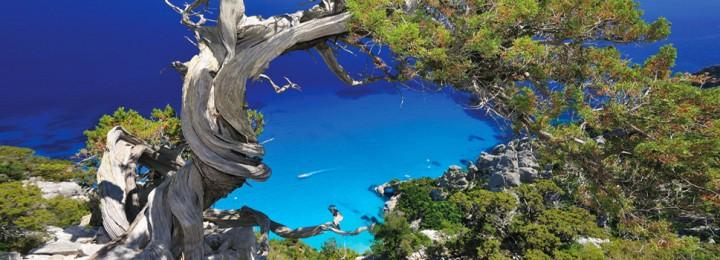 Arbatrax resort (Sardegna)