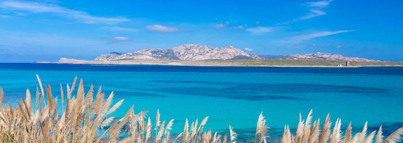 Pelosa beach (Sardinia)