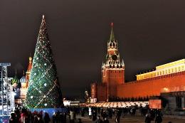 елка. рождество. новый год. праздник. москва