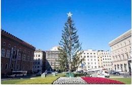 елка. рождество. новый год. европа. италия. рим. скандал. путешествие. праздник