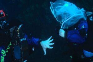 италия. свадьба. дайвинг. апулия. море пещера. путешествие